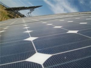 Placas fotovoltaicas. 2010. Fuente: renewableenergymagazine.com.