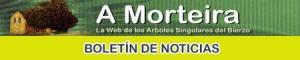 Logo del boletin de noticias de A Morteira. Amorteira.org.