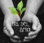 Día Internacional del Árbol. Fuente: ecoticias.com.
