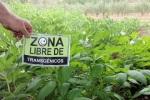 Ecobierzo quiere que la comarca berciana sea declarada Zona Libre de Transgénicos. Ecobierzo.wordpress.com.