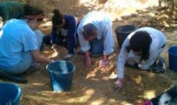 Una exhumación de los restos de víctimas de la represión franquista. 2009. Fuente: memoriahistorica.org.