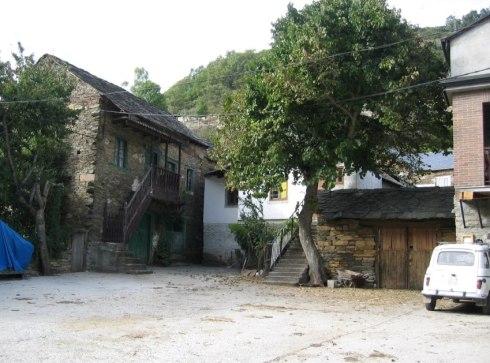 La morera de Bouzas en el año 2007. Fuente: Bierzonatura.blogspot.com.