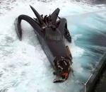 El Ady Gil, el más veloz navío de Sea Shepherd, se hundió en el Océano Austral partido en dos por un violento ataque de cazadores de ballenas japoneses.  Seashepherd.org.