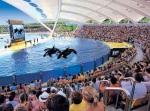 El orcario de Loro Parque donde sucedió el luctuoso suceso es uno de los más grandes del mundo. Puerto de la Cruz. 2009.