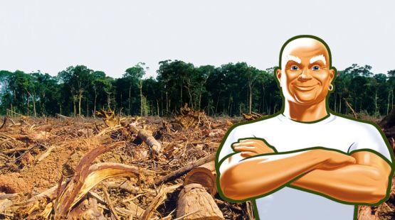 La selva ya está limpia. Fotomontaje. Salva la Selva.org.