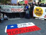 Protesta en Chile contra los transgénicos de Monsanto. 2013. Chile sin transgénicos.