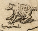 Armadillo dibujado en  el mapa de Alonso de Ovalle de 1646. Wikipedia.org.