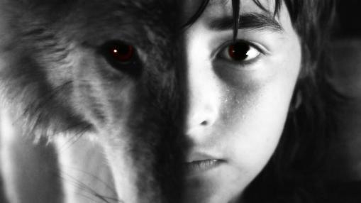 Derechos de los animales. Autor: Bran Stark.