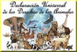 Declaración Universal de los Derechos de los Animales. Forovegetariano.org.
