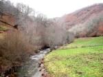 El río Barjas en la zona del azud proyectado. 11 enero 2013. Unecologistaenelbierzo.wordpress.com. Foto: Enrique L. Manzano.