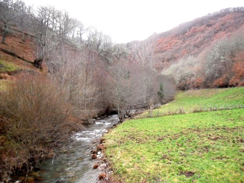 El río Barjas a su paso por la zona del azud proyectado. 11 enero 2013. Fuente: unecologistaenelbierzo.wordpress.com. Foto: Enrique L. Manzano.