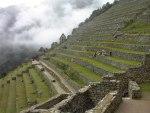 Terrazas de cultivo incas. Fuente: ecocosas.com.