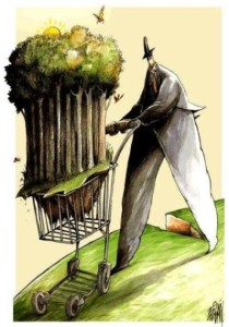 Hemos 'comercializado' la naturaleza en un producto más. David Hammerstein.com.