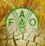 Logo de la FAO. Fao.org.