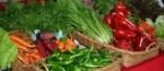 Los consumidores quieren conocer el origen de los alimentos que consumen.