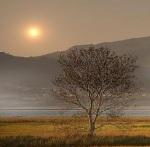 Hermoso atardecer en algún remoto lugar del planeta Tierra. Fuente bosquihermanos.blogspot.co