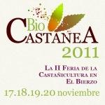 Cartel. Biocastanea 2011. Fuente: unecologistaenelbierzo.org.