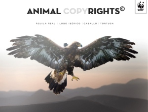 Animal Copyrights. Mayo 2015. Latinstock.es.