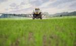 Francia continuará rociando sus cultivos con glisofato. 2015. Glisofato. Shuterstock.
