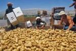Pobreza. La lucha contra el hambre es un asunto de todos. Fuente: portaldelmedioambiente.com.