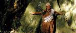 Cada día crece la conciencia de la necesidad de defender nuestros bosques contra la especulación. Salvalaselva.org.