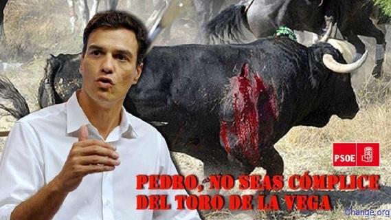 Campaña en 'Chang.org' contra el Toro de la Vega. Agosto 2015. Change.org.
