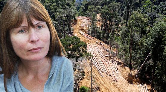 Clare Rewcastle Brown denuncia la destrucción de los bosques y la corrupción política en Malasia. Salvalaselva.org. Erwin Zewinden.