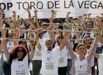 'Rompe una lanza'contra el Toro de la Vega. Madrid, 12 sept. 2015.Albaalberguewordpress.com.