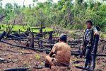 La deforestación en la reserva Bosawas, en Nicaragua, es fuente de preocupción del gobierno nicaragüense. Dialogochino.net. Foto: Alam Ramírez Zelaya.