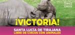 Santa Lucía de Tirajana libre de circos con animales. 28 enero 2016. Infocircos.org.