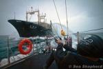Sea Shepherd en una acción contra un barco ballenero.. Taringa.net.