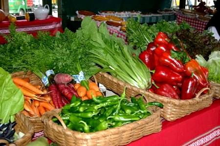 Agricultura ecológica. Fuente: Ecologiaverde.com.