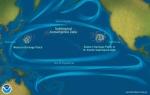 La gran mancha del Pacífico Norte. 2015. Baysidejournal.comwp. NOAA.
